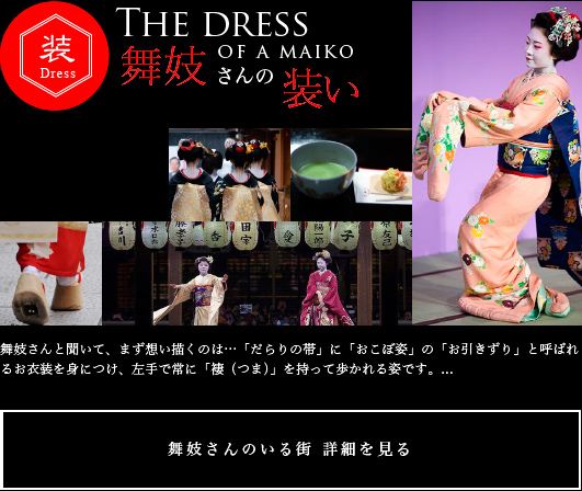 Dress of Geisha