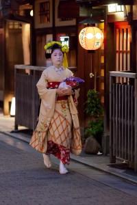 菊のかんざし 祗園甲部舞妓 佳つ智さん